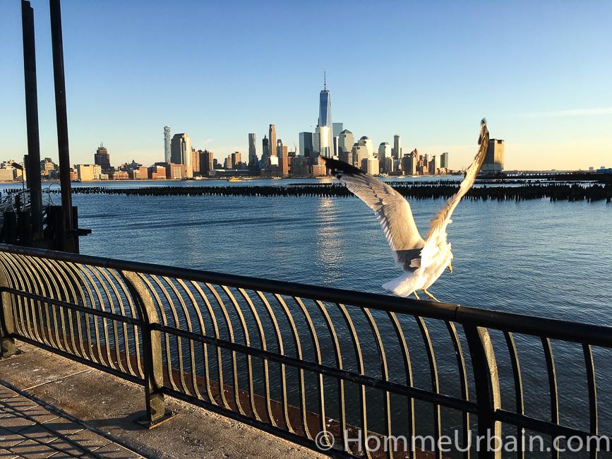 vue de New York manhattan