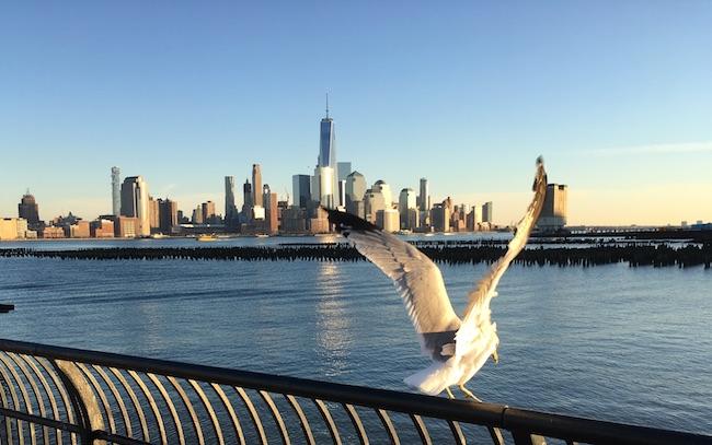 New York Skyline de Manhattan